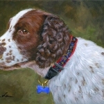 Bella, Springer Spaniel Painting by Hope Lane