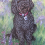 Sequoia, portrait of a Labradoodle by Hope Lane